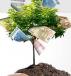 Лучшие проекты инвестирования - Большой отчет, итоги, мысли. Куда вложить осенью 2014 ?