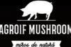 Agroif Mushroom SRL - Лидер по популяроности, оригинальная легенда. От 1.2% в сутки